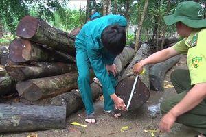 Thanh tra trách nhiệm quản lý đất rừng của lãnh đạo Bình Phước