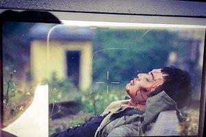 Cái chết bí ẩn của Cảnh trong 'Quỳnh búp bê' gây hoang mang