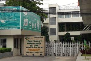 Xem xét lại sai phạm tại Tổng công ty Nông nghiệp Sài Gòn