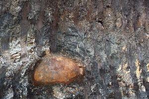 Đắk Lắk: Phát hiện quả bom 200kg trong mỏ đá