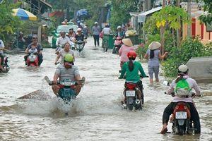 Triều cường dâng cao, nhiều tuyến đường ở Vĩnh Long chìm trong biển nước