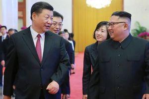 Hàn Quốc: Ông Tập Cận Bình có thể sắp thăm Triều Tiên