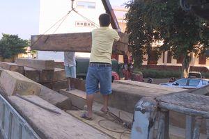 Bắt vụ vận chuyển 30m3 gỗ lậu tại huyện M'Đrắk, Đắk Lắk