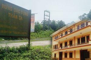 Thái Nguyên: Đã rõ trách nhiệm vụ phá rừng đặc dụng