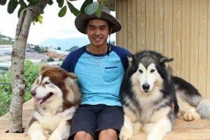 Lâm Đồng: 9X nuôi đàn chó Tây to xác để khách chụp ảnh và thu trăm triệu/tháng