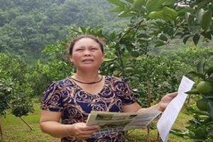 Tuyên Quang: 'Phớt lờ' chỉ đạo của huyện, UBND xã làm khó người dân