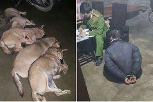 Bắt nhóm trộm chó, 3 công an bị phơi nhiễm HIV