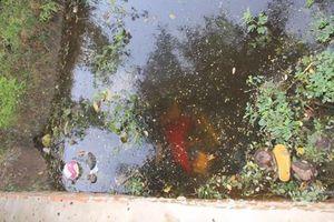 Tá hỏa khi phát hiện thi thể 2 thanh niên dưới mương nước