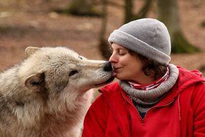 Chó trung thành với chủ do gene hay yếu tố nào khác?