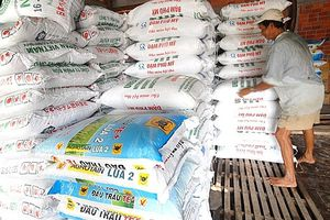 Cần tuân thủ nghiêm túc quy trình công nghệ để đảm bảo chất lượng phân bón