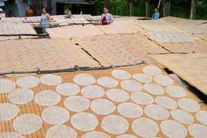 Làng nghề bánh tráng Thuận Hưng 'đỏ lửa' hơn 200 năm