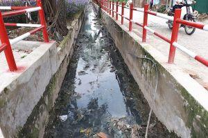 Sau bài viết trên Lao Động: Hà Nội yêu cầu kiểm tra, sớm khắc phục ô nhiễm môi trường