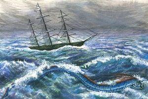 Câu chuyện ám ảnh về loài 'rắn biển khổng lồ'