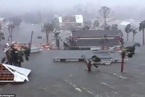 Siêu bão 'quái vật' Michael tấn công, Florida chìm trong biển nước