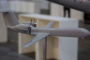 Ukraine giới thiệu một UAS mới từ Antonov