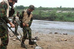 Ánh sáng hòa bình trong Khu Phi quân sự Triều Tiên