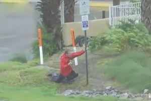 Đưa tin trực tiếp về siêu bão, nam phóng viên Mỹ suýt bị gió thổi bay
