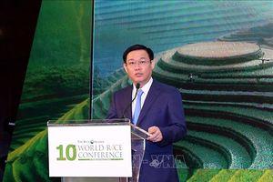 Việt Nam tham gia phát triển công nghệ bền vững trong nông nghiệp, khẳng định thương hiệu gạo
