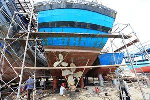 Điểm tựa cho ngư dân 'hồi sinh' sau sự cố môi trường biển