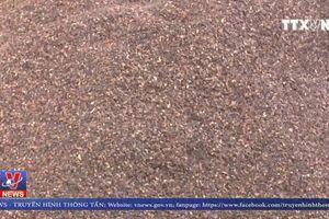 Đắk Nông truy tố 5 bị can vụ phế phẩm cà phê, cát sỏi trộn lõi pin