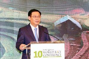 Đầu tư vào ngành gạo trong tương lai