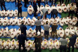 Chợ cá lớn nhất thế giới ở Nhật Bản chính thức hoạt động trở lại