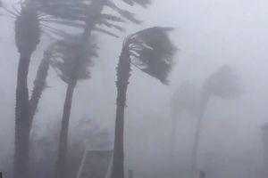 Siêu bão Michael đổ bộ vào Mỹ và Panama với sức tàn phá khủng khiếp