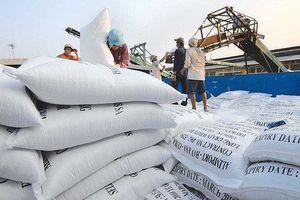 Đến hết ngày 15/9, xuất khẩu gạo đạt 4,73 triệu tấn, trị giá 2,38 tỷ USD