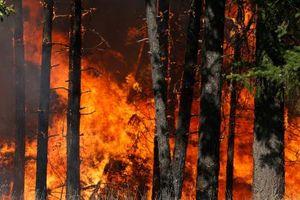 Lửa địa ngục - hồi chuông cảnh báo biến đổi khí hậu toàn cầu