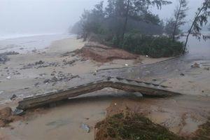 Hơn 30km bờ biển ở TT- Huế bị sạt lở nghiêm trọng