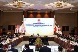 Hội nghị Bộ trưởng Nông Lâm ASEAN+3 lần thứ 18: Tăng cường an ninh lương thực và dinh dưỡng
