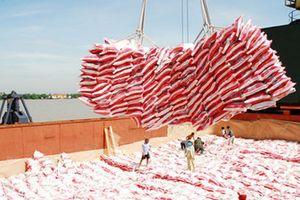 Yêu cầu các ngân hàng đáp ứng nhu cầu vốn cho xuất khẩu gạo