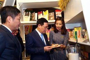 'Cạnh tranh bình đẳng mới có hoạt động xuất khẩu gạo mang tầm quốc tế'