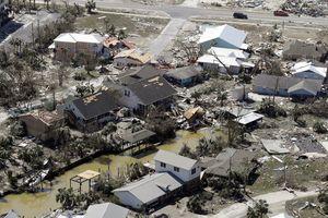 Bão Michael quật đổ nhiều cây xanh, làm 7 người chết tại Mỹ