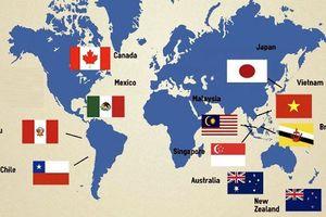 Đây có thể là chiêu bài giúp Trung Quốc lật ngược thế cờ trong chiến tranh thương mại với Mỹ