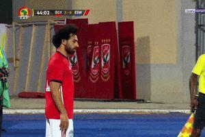 Mohamed Salah dính chấn thương sau khi lập siêu phẩm cho ĐT Ai Cập