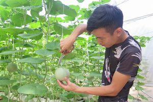 Thán phục chàng trai trẻ làm nông nghiệp dùng 'công nghệ điều khiển từ xa'