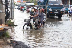 Đồng bằng sông Cửu Long đang... chìm, vì đâu?