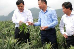 Diễn đàn Nông dân quốc gia: Khơi thông lợi thế, nông sản Việt vươn xa
