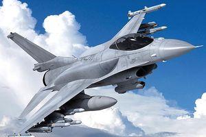 Hé lộ nguyên nhân tiêm kích F-16 bị thiêu rụi tại Bỉ