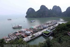 Điều chỉnh các Quy hoạch chung thành phố Hạ Long và Thái Nguyên