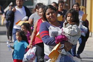 Mỹ nỗ lực ngăn chặn người nhập cư bất hợp pháp