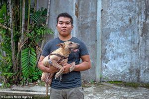 Nghị lực sinh tồn của chú chó không có 2 chân sau