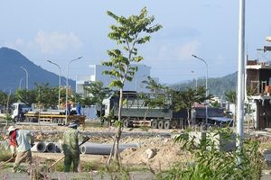 Khu đô thị vắng bóng người tại Nha Trang (Kỳ cuối): Chính quyền vào cuộc