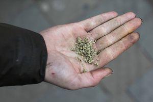 Tù nhân 'ngáo đá' tự thiêu chết trong nhà tù nghiêm ngặt nhất ở Anh