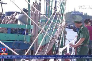 Bình Định lai dắt tàu cá cùng 7 ngư dân vào bờ an toàn
