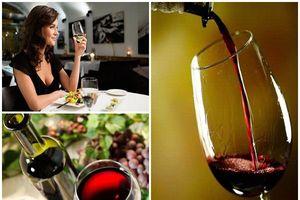 Khoa học chứng minh: Uống rượu vang có thể giúp bạn sống lâu hơn
