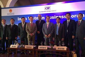 Hậu Giang quảng bá tiềm năng thương mại và đầu tư tại Ấn Độ
