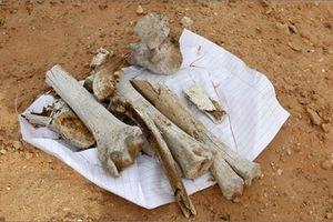Lybia liên tiếp phát hiện các ngôi mộ tập thể khổng lồ
