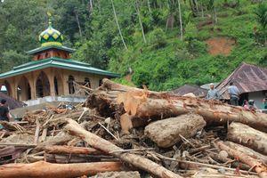 Lũ quét và sạt lở đất tại Indonesia: Ít nhất 27 người chết, cả một trường học bị phá hủy